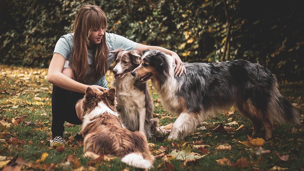 Dog Moms Charlotte