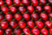 The Carmel Cherry Farm