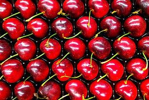 The Carmel Cherry Farm