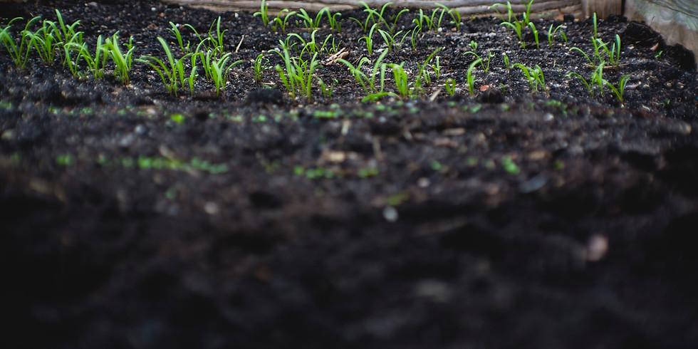 """The Good Soil""     Worship Service"