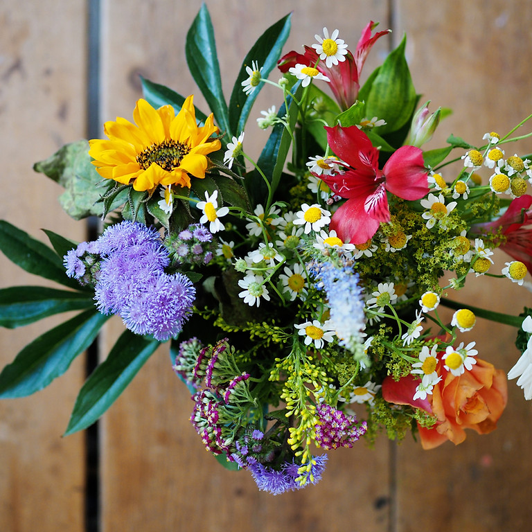 Introduction to Flower Remedies