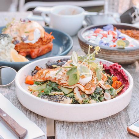 Diet + Your Immune System
