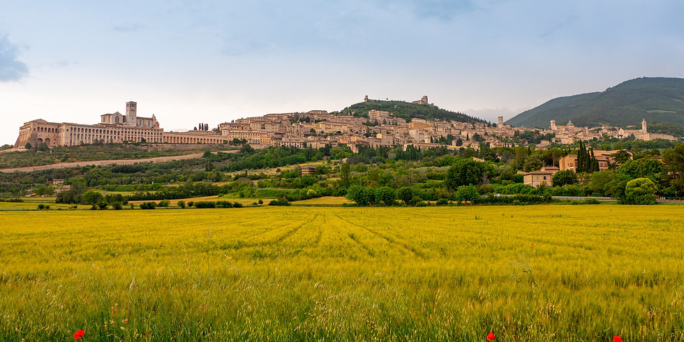 Assisi & the Desire to Repent & Renew; to & Educate & Form