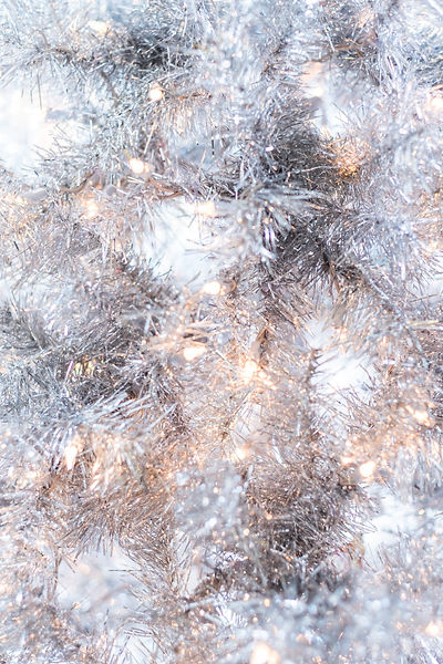 Winter Gold and Silver Image by Rinck Content Studio