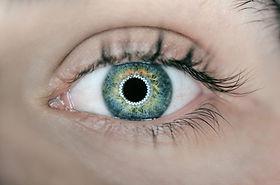 På kurset får du en professionel indsigt i, hvad Irisanalysen kan. Irisafspejler hele kroppen, og er et vindue til hele mennesket. Et kigind i øjet kan derfor fortælle om kroppens helbredstilstand.