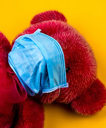 Mask on Teddy Bear - Image by Volodymyr Hryshchenko