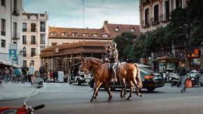 Atların Asayiş Hizmetinde Kullanımı