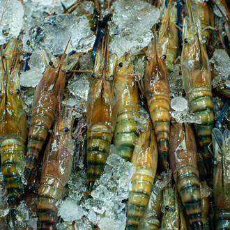 海鮮鍋物/ 河馬水產
