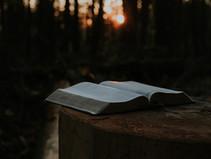 Natječaj za Recital duhovne poezije Sveti Martin, svetac milosrđa i dijeljenja
