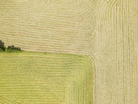 VAGA - Auxiliar de Agricultura de Precisão