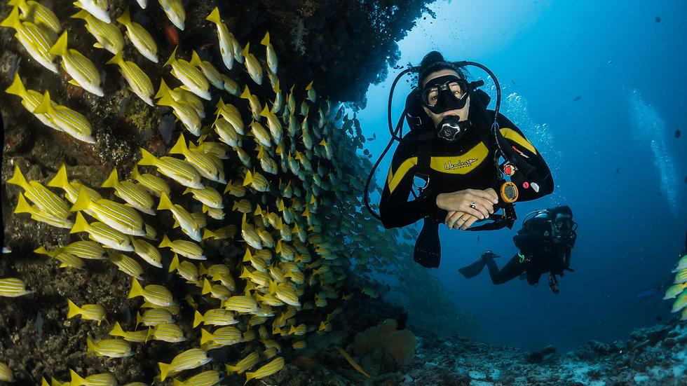 Eco-Open Water Scuba Diver