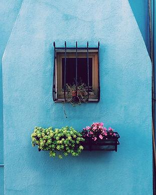 Image by Paula Borowska