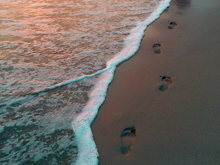 Footsteps of Time