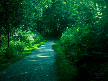Recreational Rail Trails In New Hampshire