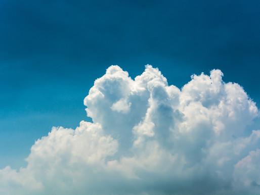 Marcas passam a neutralizar suas emissões de CO2