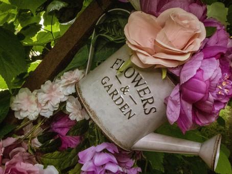 Chéri, on a oublié les plantes !