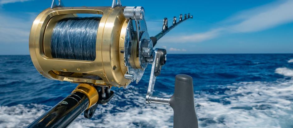 Inshore Fishing Guide