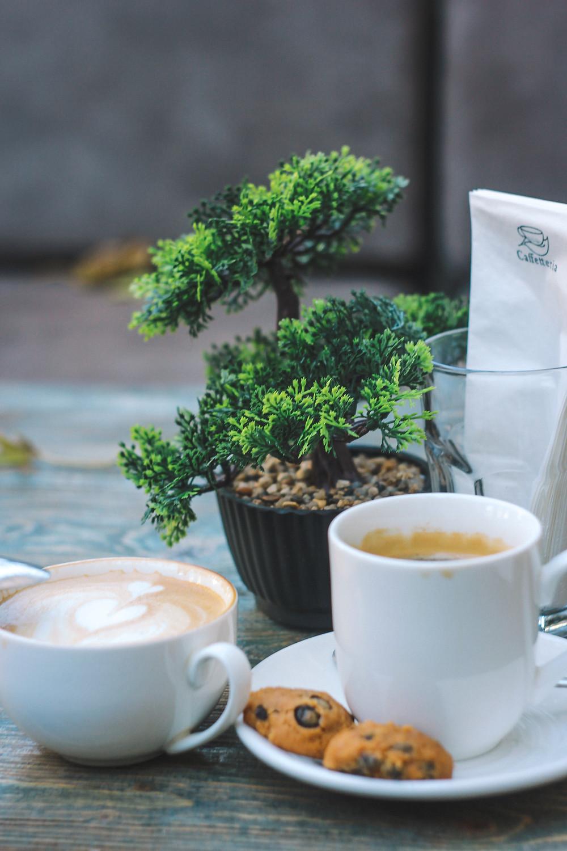 kawa świeżo palona espresso bonsai
