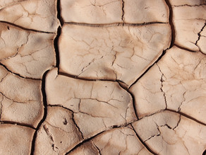Are You Dry Or Dehydrated? There's a Big Difference