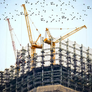 Estimating and Tendering Services