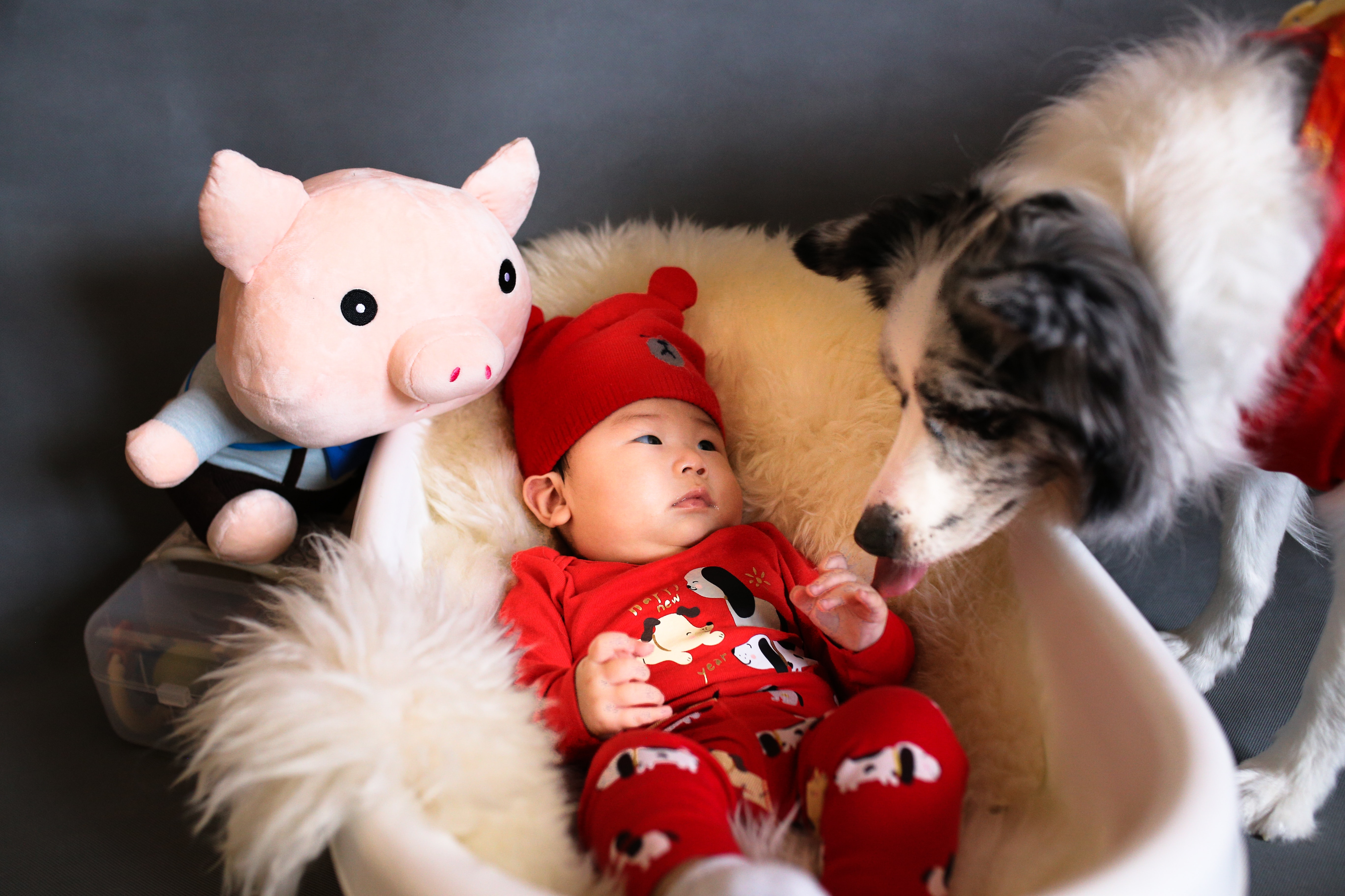 Baby & Pet Care