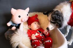 Baby & Pet Care