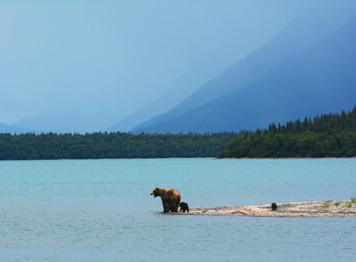 A Once In A Lifetime Trip: Alaska
