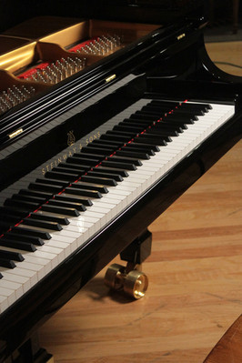 Cost of piano tuning for a Steinway in the Philadelphia and New York areas by a master piano technician