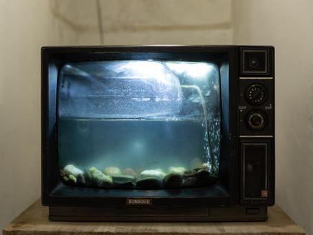 Assista menos à TV.