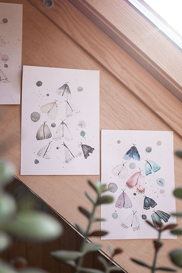 Image by Tīna Sāra