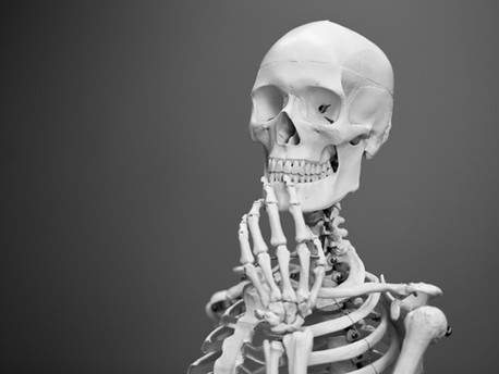 Strong and Healthy Bones and Teeth