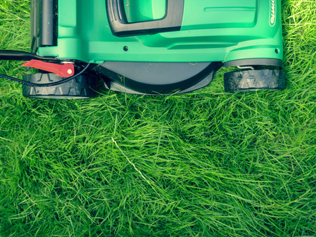 Lessons from the Lawn Guy