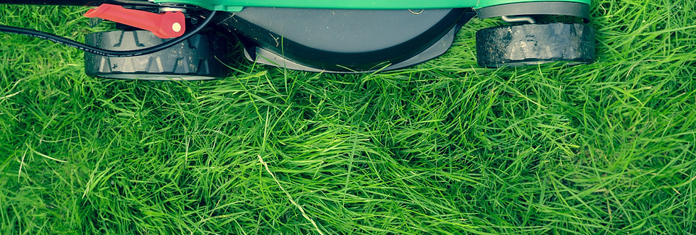 Northern NSW Successful & Well Established Mower Shop & Repairs