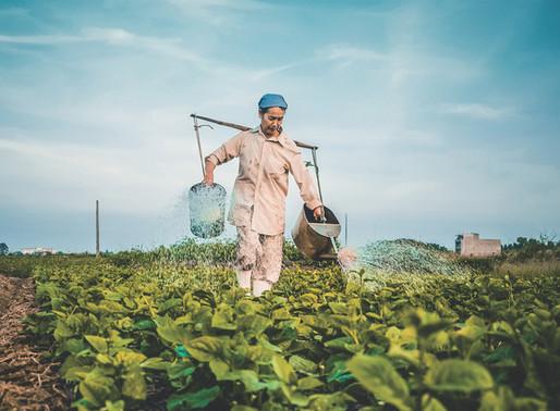 Farm Worker Awareness Week