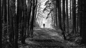 34 - The Practice of Stillness - Part 8: Discernment