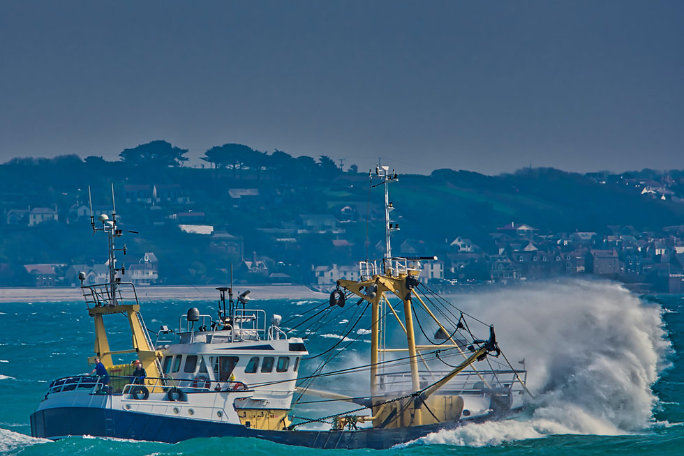 Fishing Trawler Vessel Out at Sea