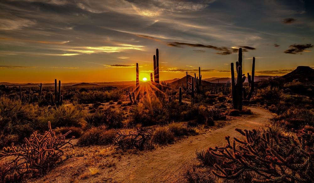 Desert Sunset in Arizona