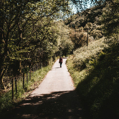 Local Walks in Horsham and Surrounding Areas