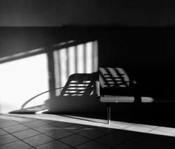 Image by Serena Naclerio