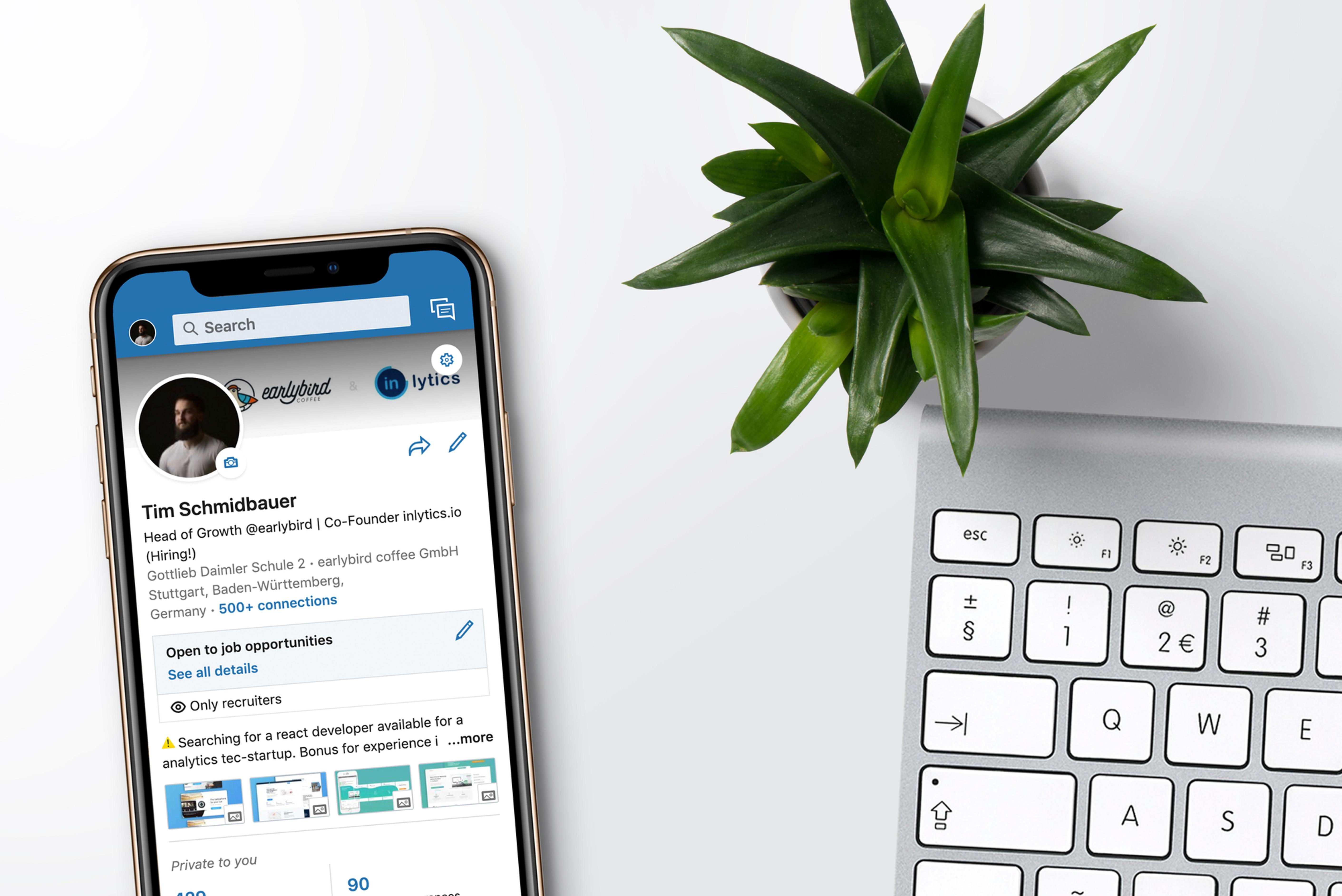 Análise, Feedback e Revisão de LinkedIn®