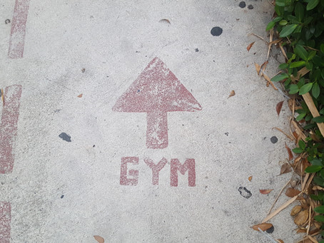 MORE-FITNESS: GYM EQUIPMENT PROJECT