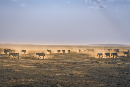 World's protected areas lack connections, recent study finds