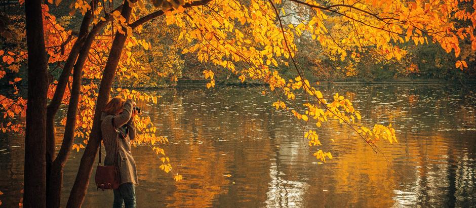 Top 8 Fall Foliage Destinations in the U.S.