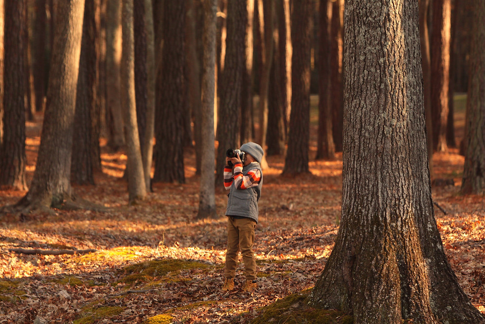 A child clicking photographs with his camera