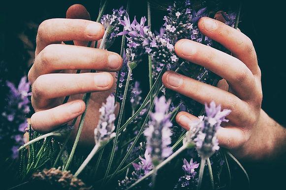 Image by Vero Photoart