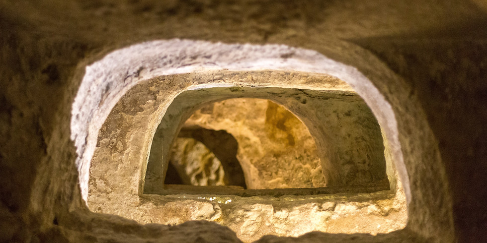 Premium Virtual Vatican Visit with Vino ! The Scavi of St. Peter's Basilica  (1)