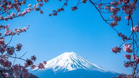 Japan to give discounts of $190 a day to boost domestic tourism