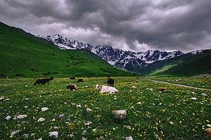 Image by Hikersbay Hikersbay