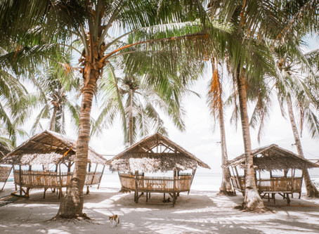 Travel and Hospitality Shifts Arising During the Corona Virus Pandemic