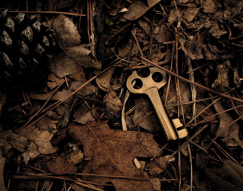 Magic key in a forest